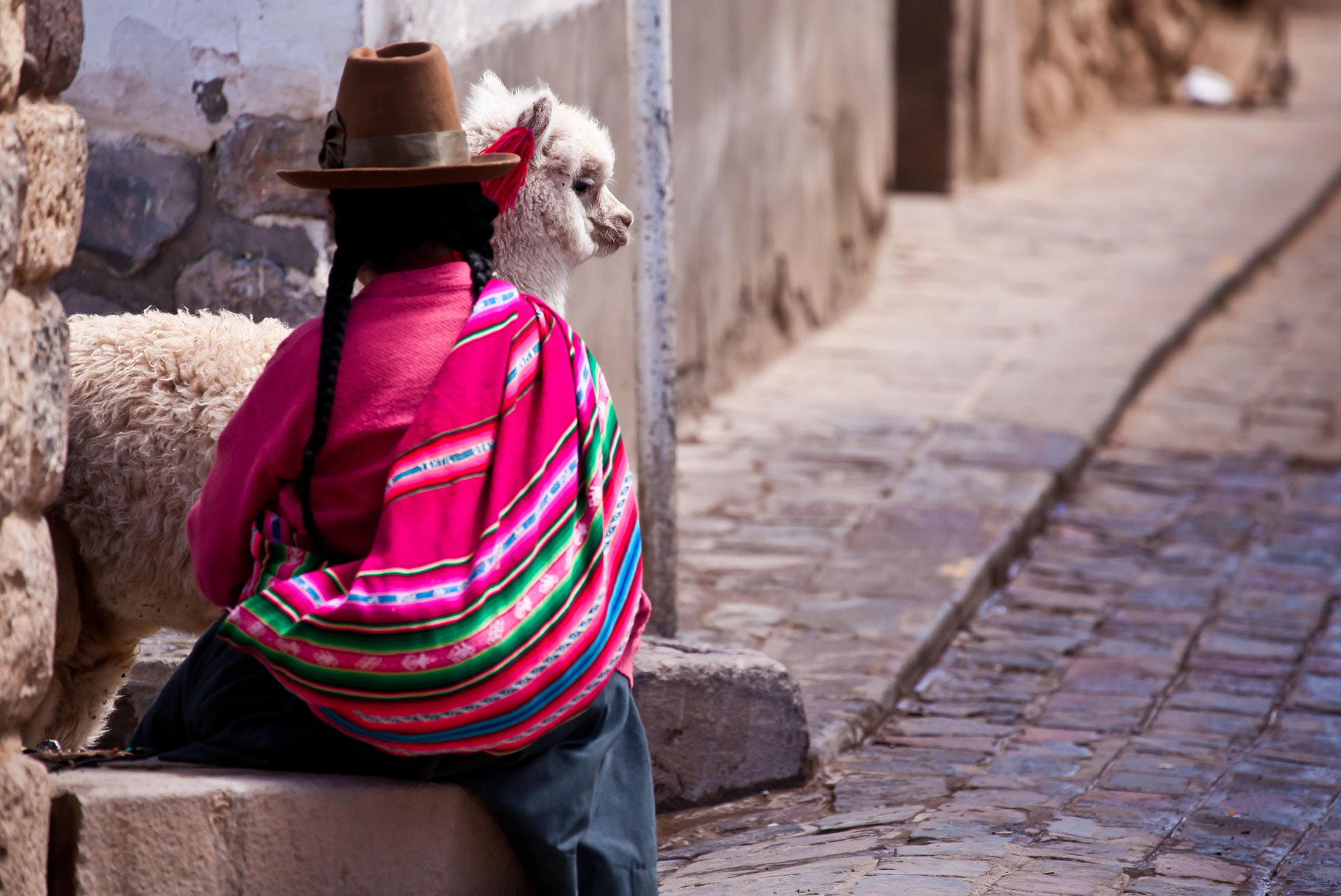 Discover South America 1