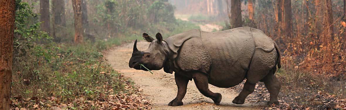 Epic India to Nepal