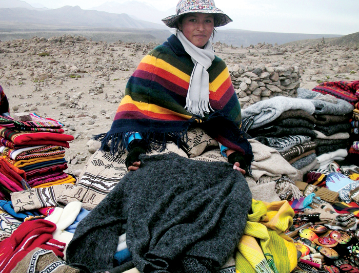 Peru Family Trek - Teens on the Trail