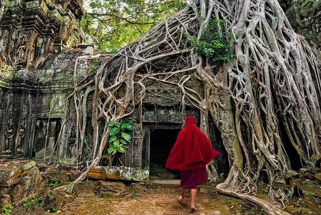 Angkor Trails 1