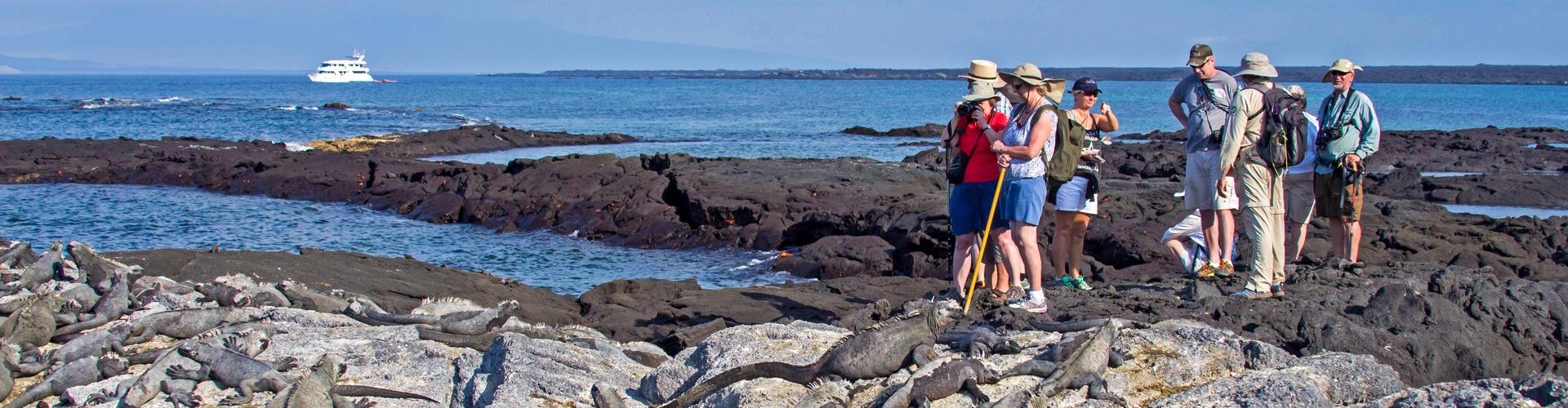 Galapagos at a Glance: Southern Islands (Daphne)