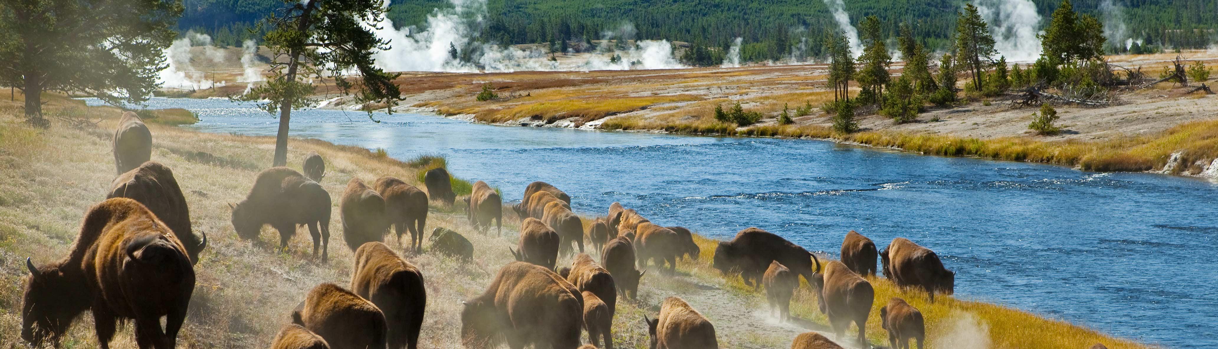 Hike & Kayak Yellowstone