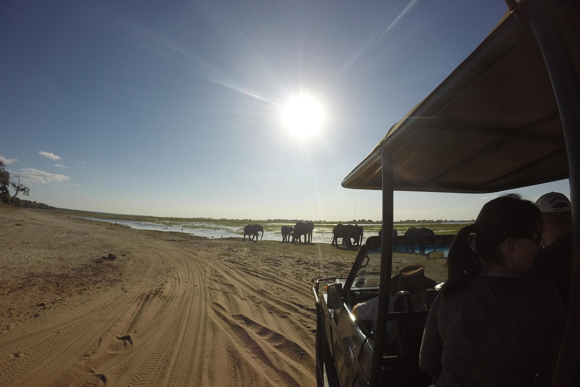 Botswana Photography Safari with Ben Mcrae 3