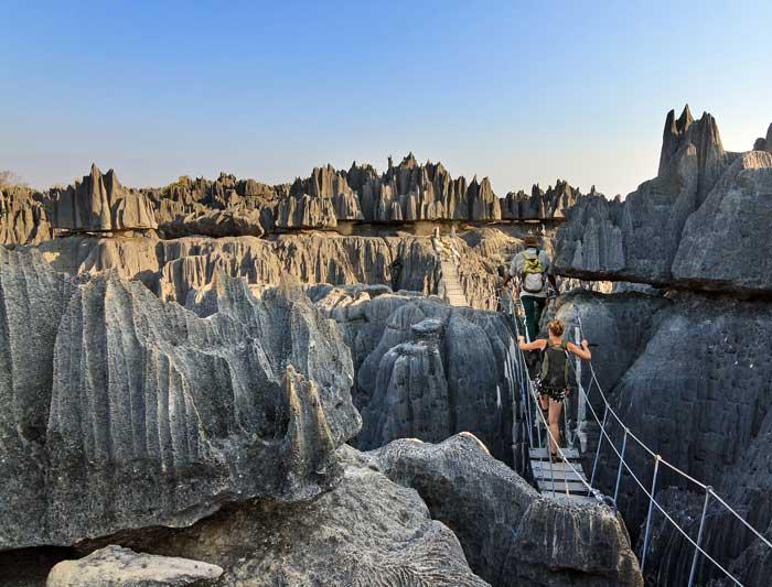 Madagascar Baobab Tree Trail 3