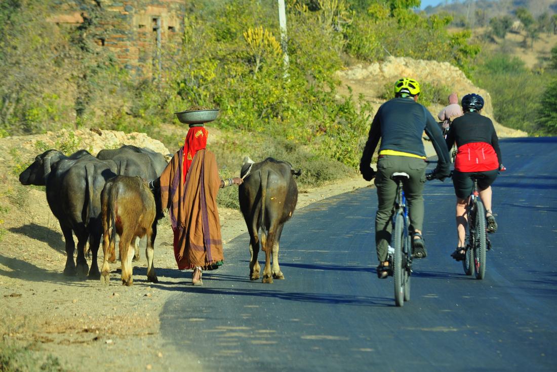 India: Hike, Bike & Raft 4