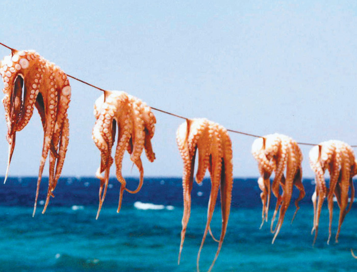 Sail Greece - Santorini to Mykonos 4