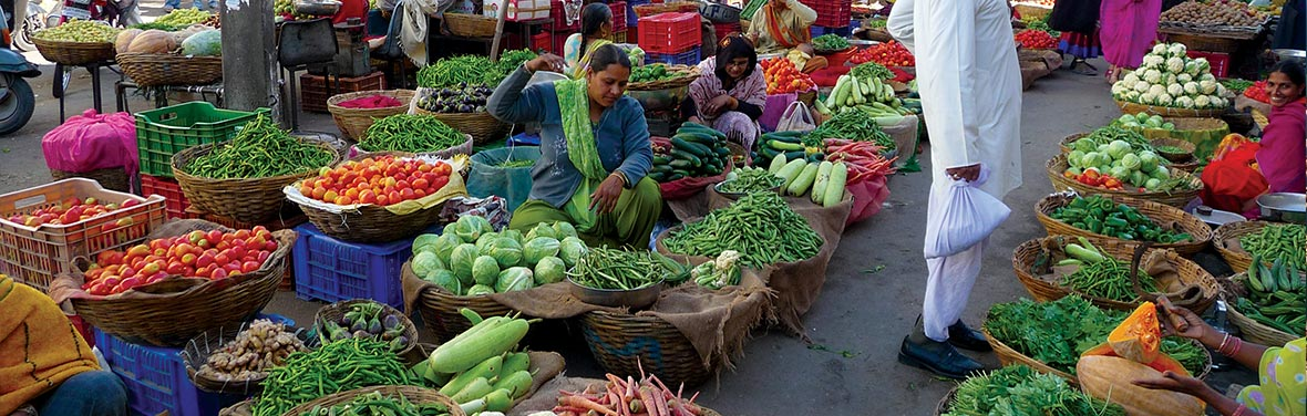 North & South India Real Food Adventure