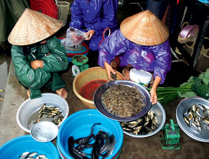 Real Food Adventure Vietnam & Cambodia 1