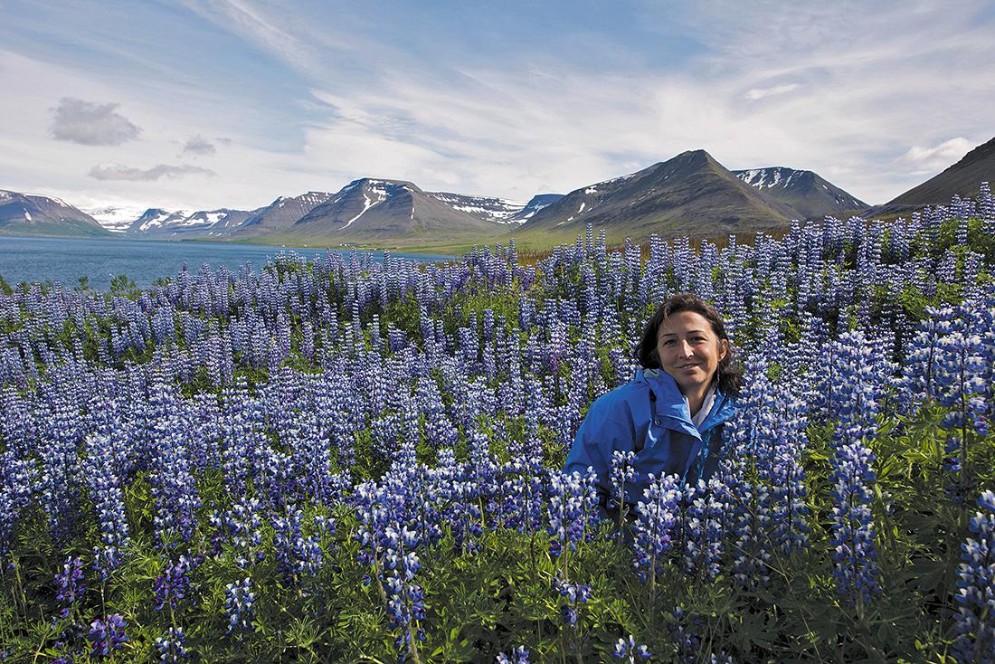 Cruising Iceland's Wild West Coast 4
