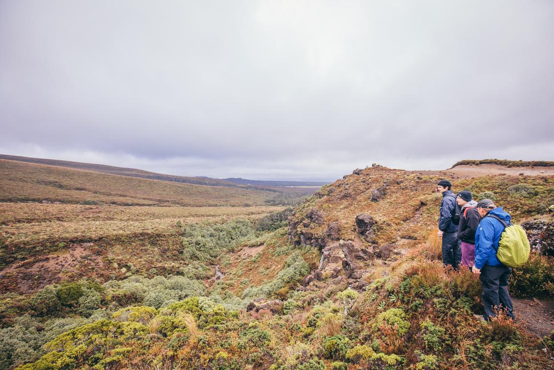 New Zealand North Island Explorer (ex Auckland) 4