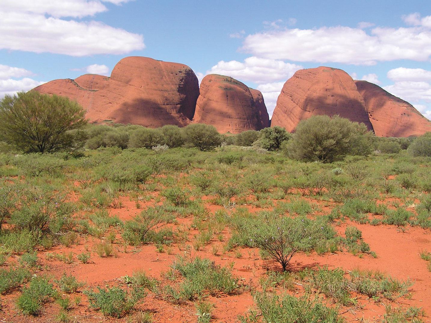 Outback & Kangaroo Island Adventure ex Yulara 1
