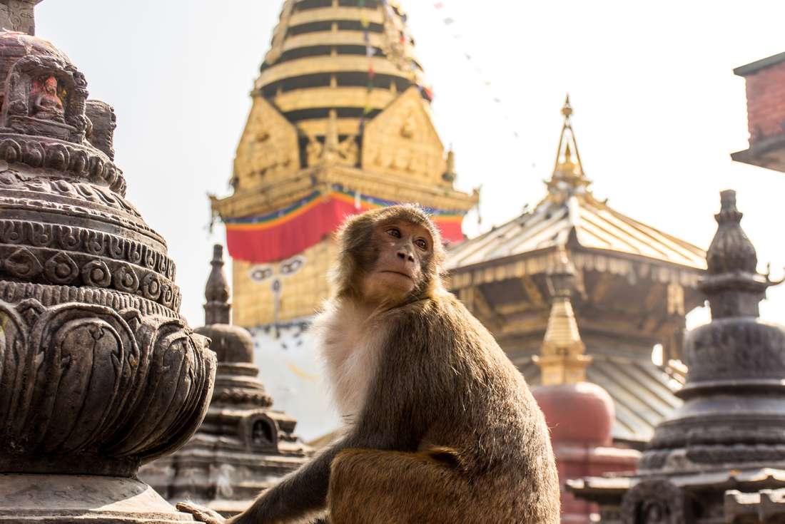 Kathmandu to Delhi Overland 1