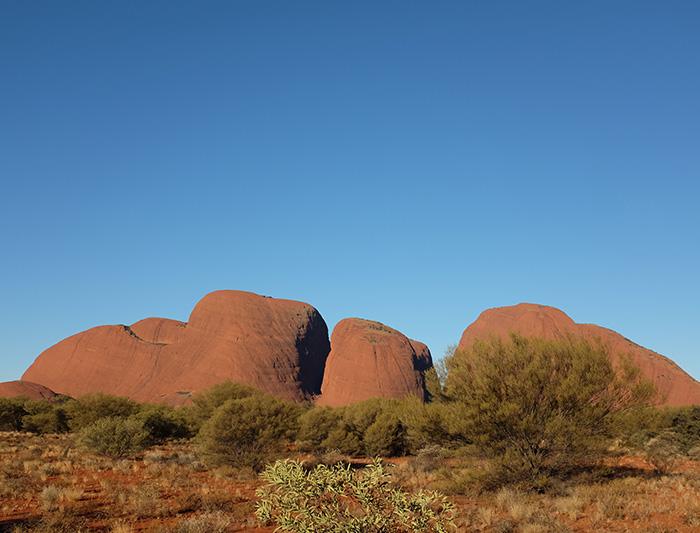 Uluru Adventure - Original ex Yulara (French speaking Guide) 1