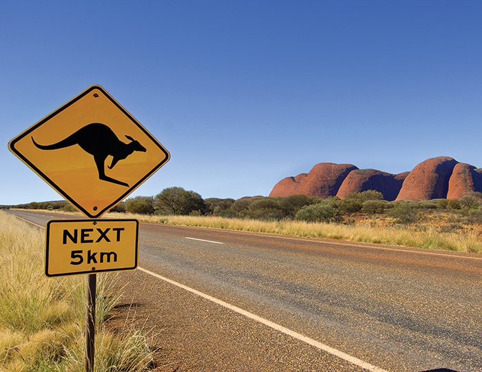 Uluru Adventure - Basix (French speaking Guide) 2