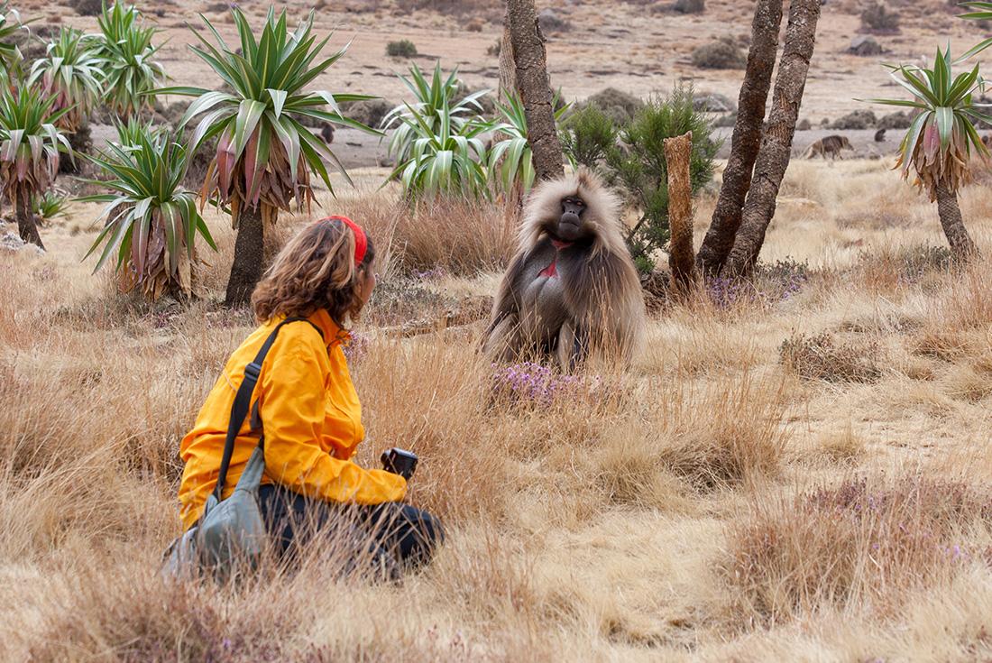 Omo to Addis 2