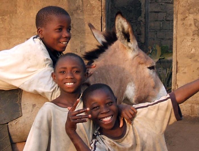 Senegal to Ghana 1