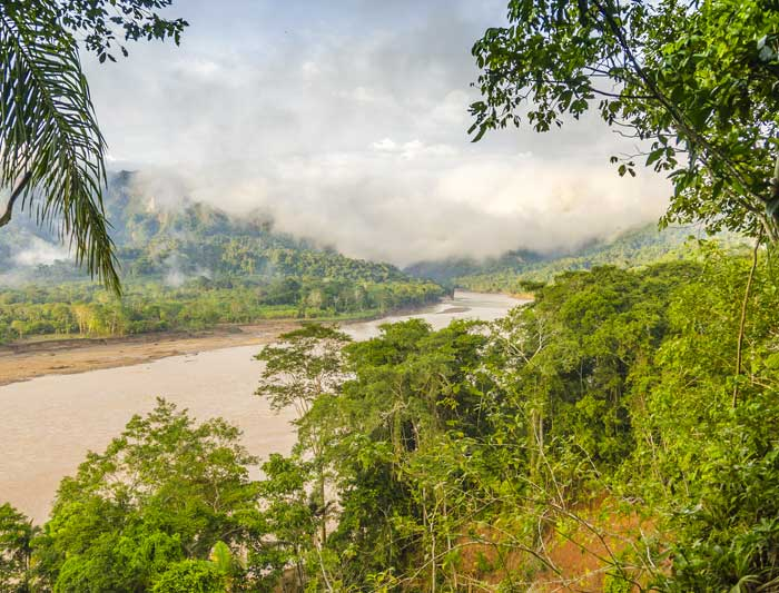 Bolivian Amazon Jungle 4