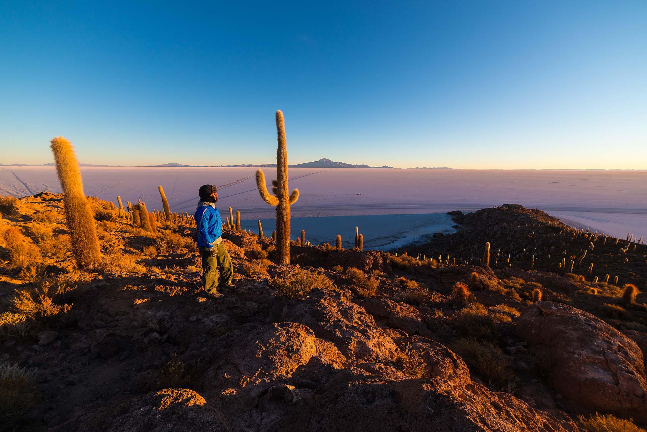 Bolivian Salt Flats & The Andean Desert 2