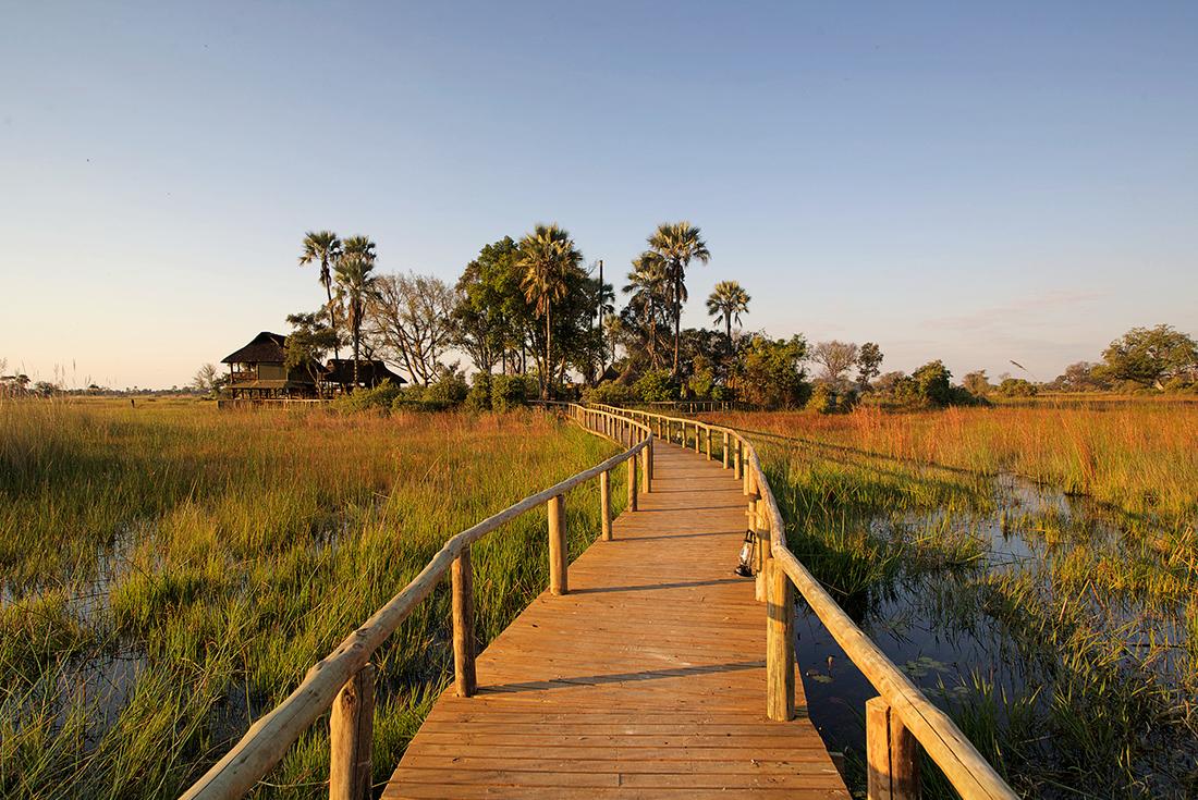Okavango Delta Fly-In Safari 2