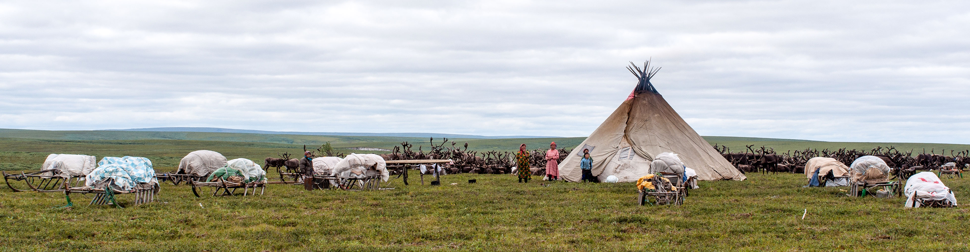 Russia Expedition: Footsteps of the Reindeer Herders