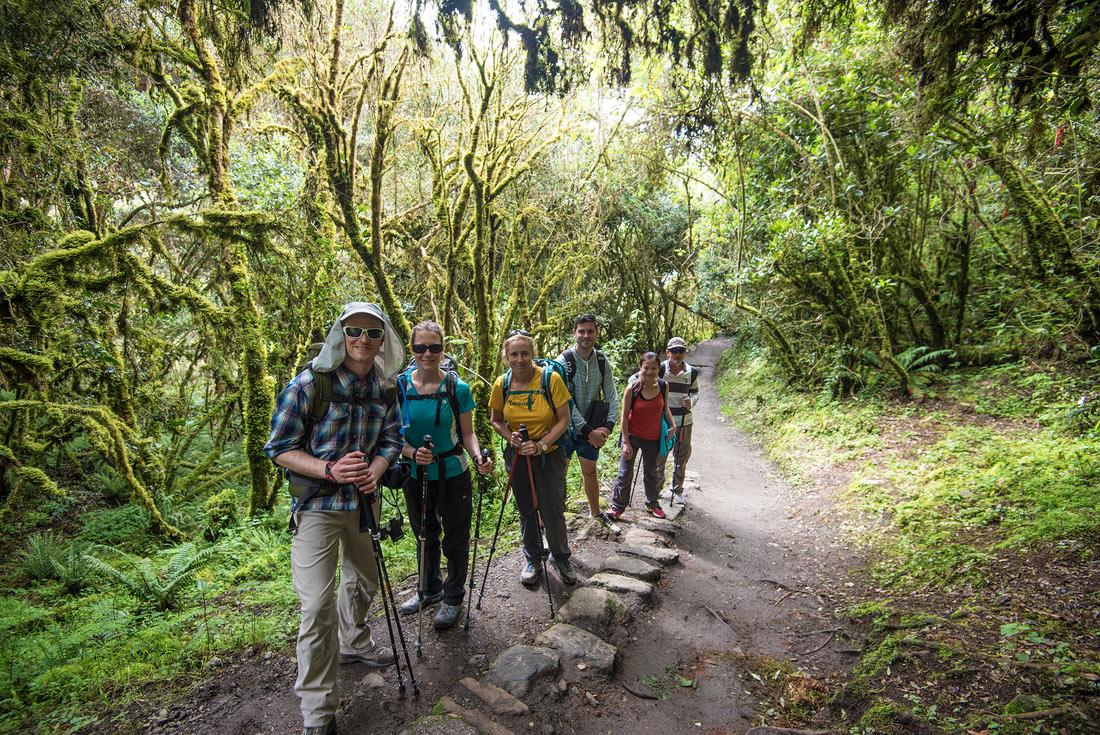 Inca Trail 2