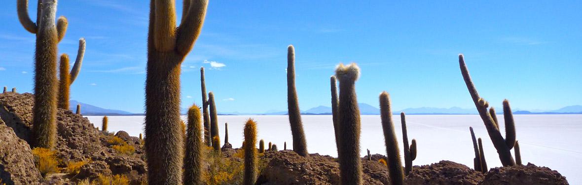 Adventure through Peru, Bolivia & Argentina