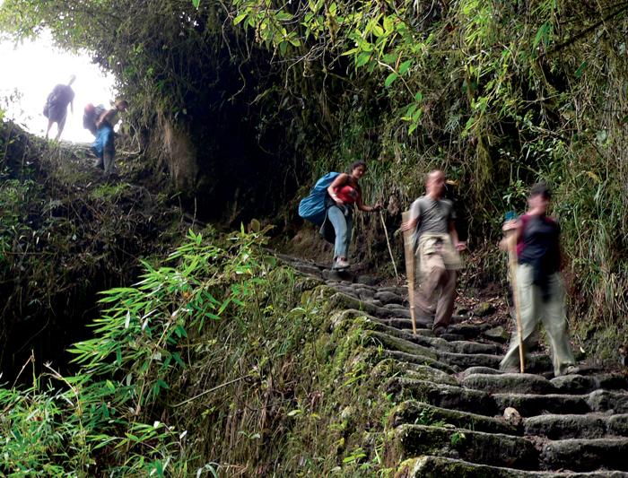 Peru and Galapagos Explorer 4