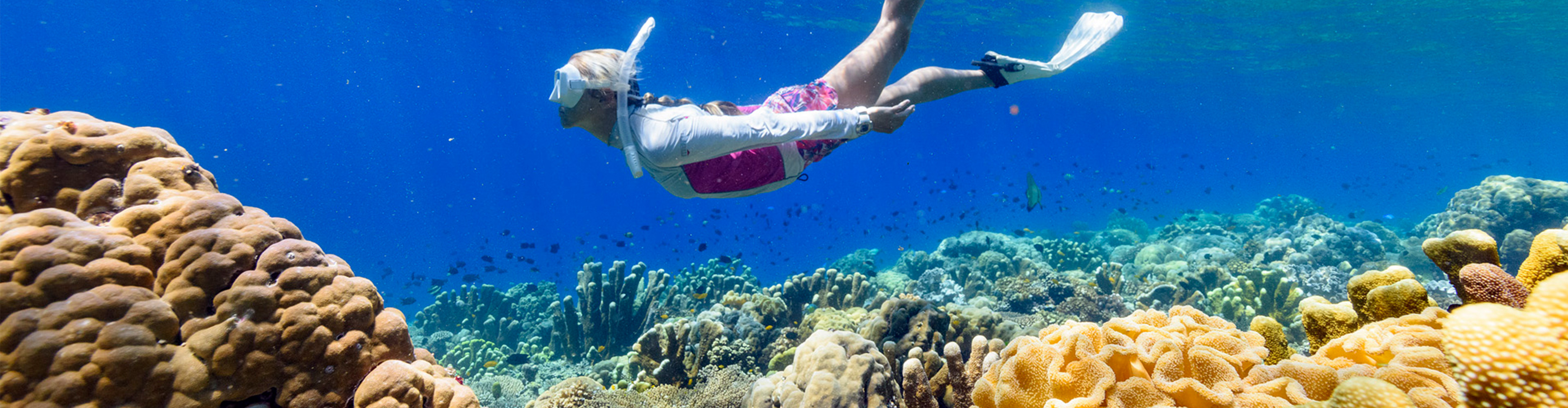 Solomon Islands Expedition