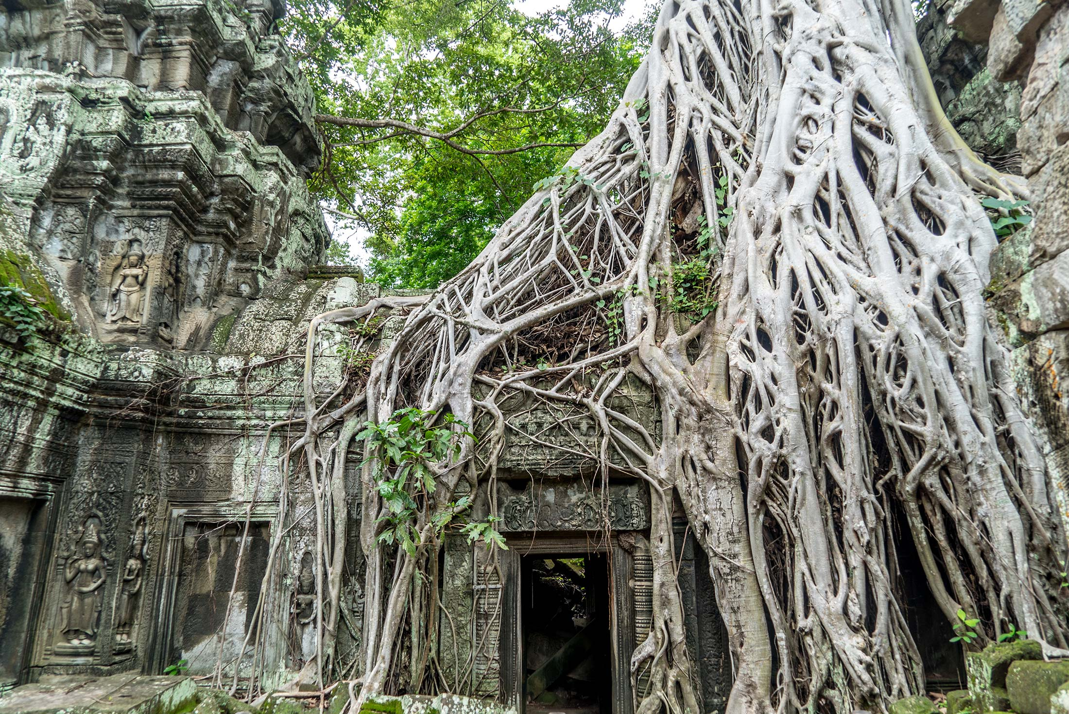 Six Days in Cambodia 4