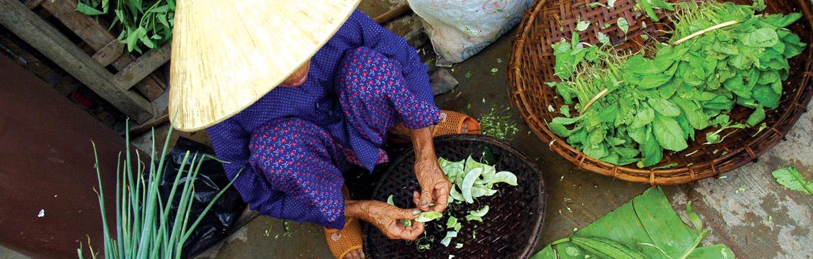 Vietnam & Cambodia Real Food Adventure