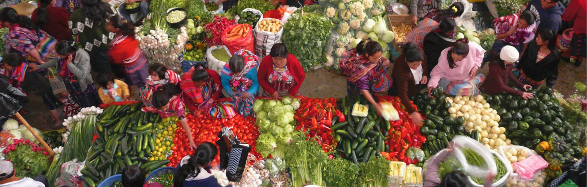 Real Guatemala to Costa Rica