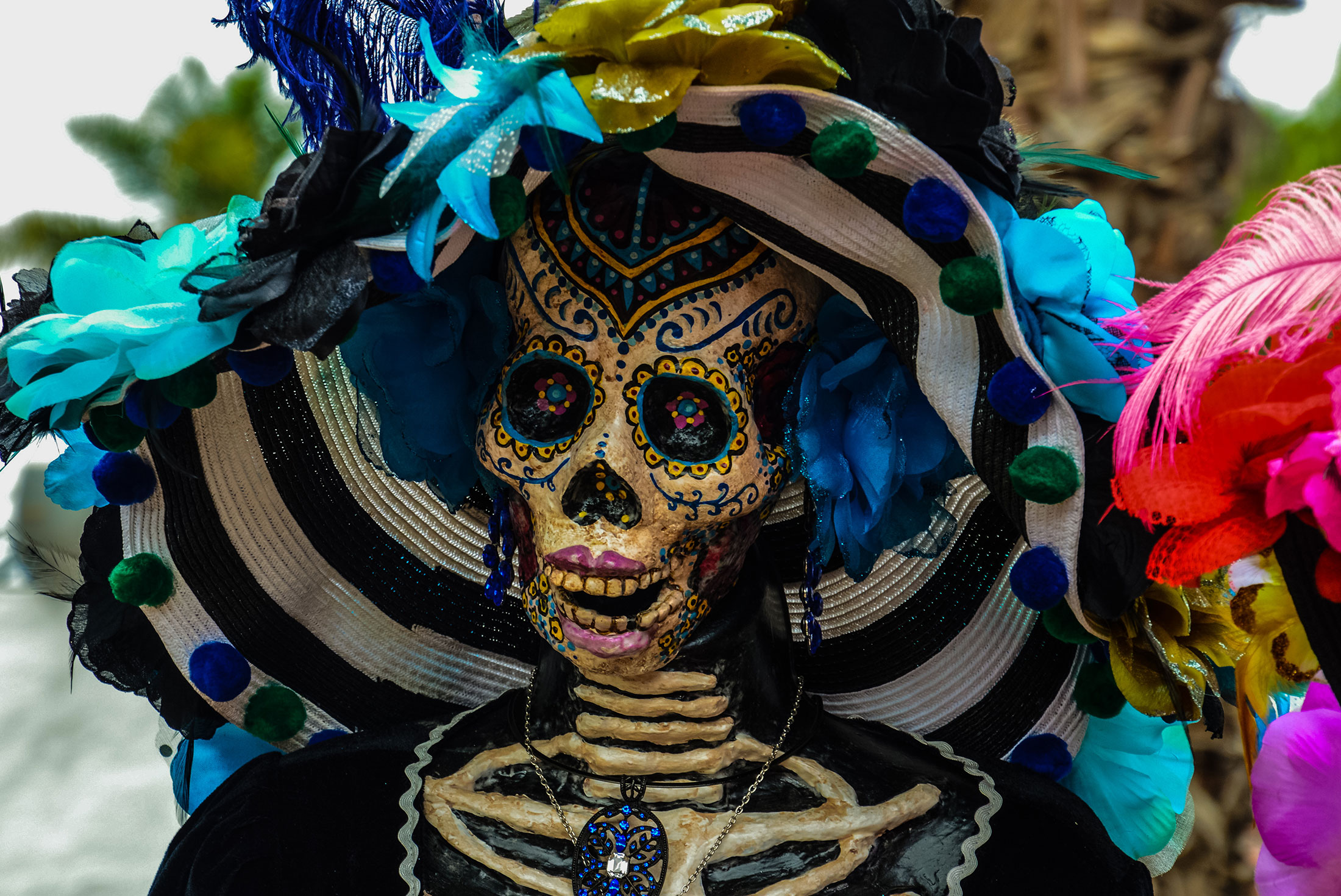 Real Day of the Dead Oaxaca 4