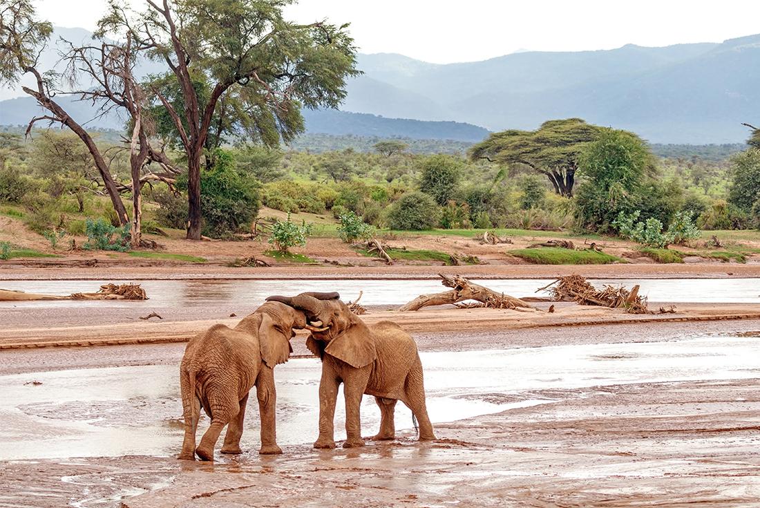 Northern Kenya & Untouched Ethiopia 1