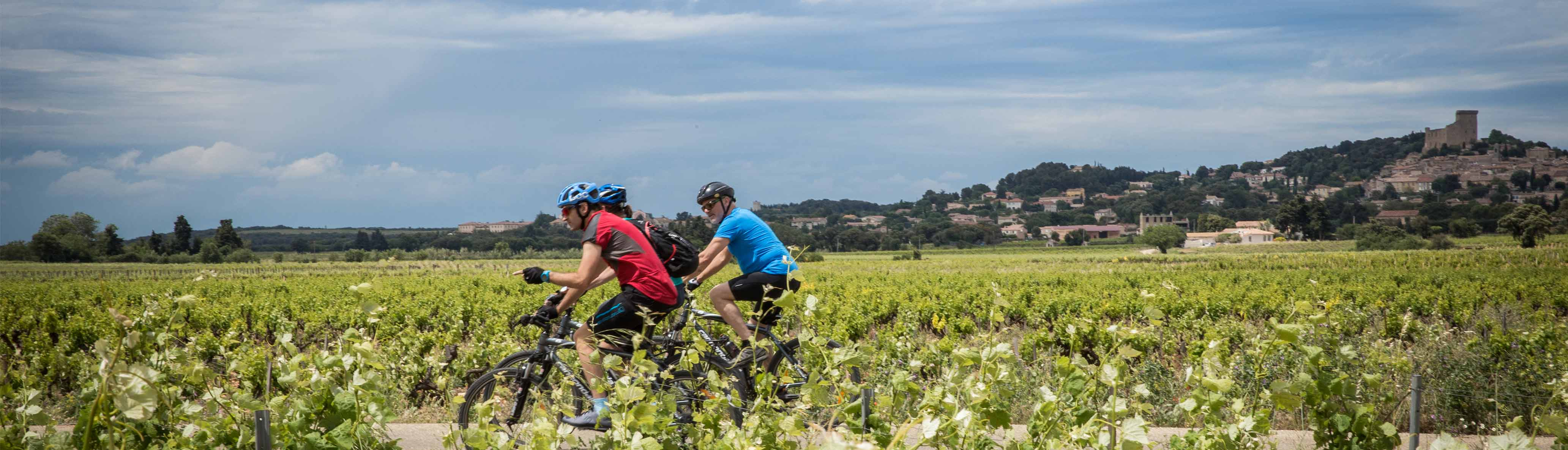 Cycle Provence & Tuscany