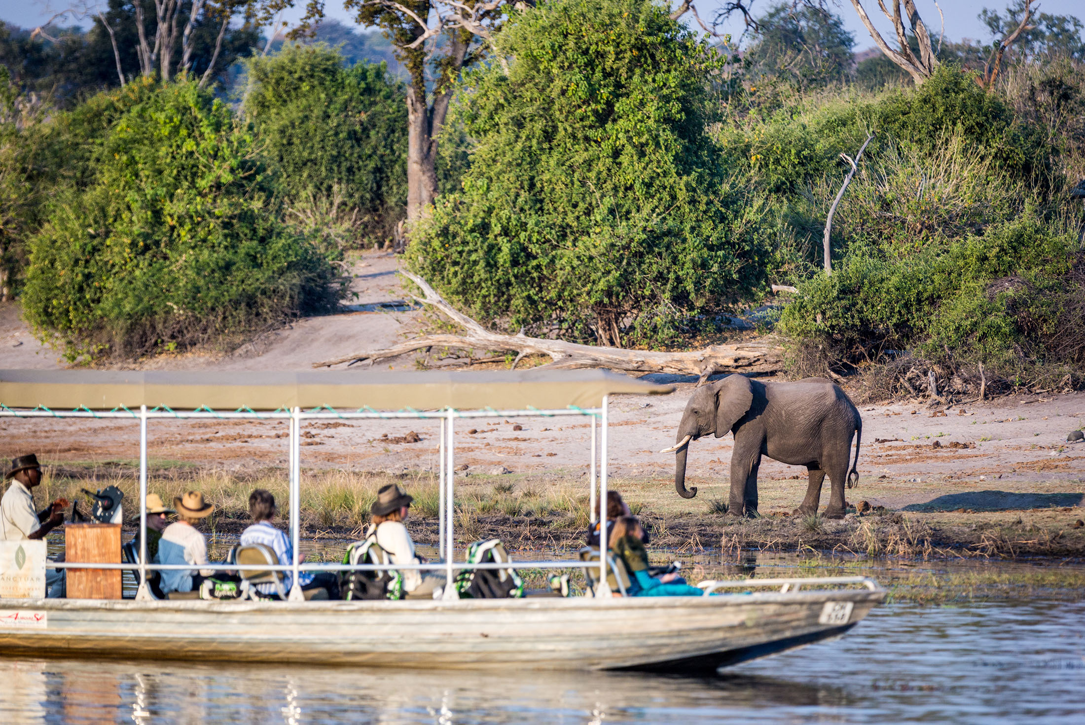Botswana Family Safari with Teenagers 3