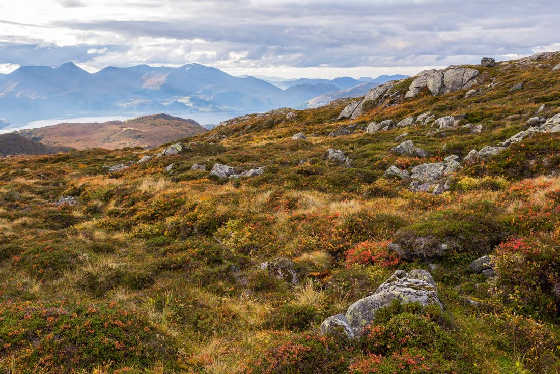 Northern Norway Explorer 2