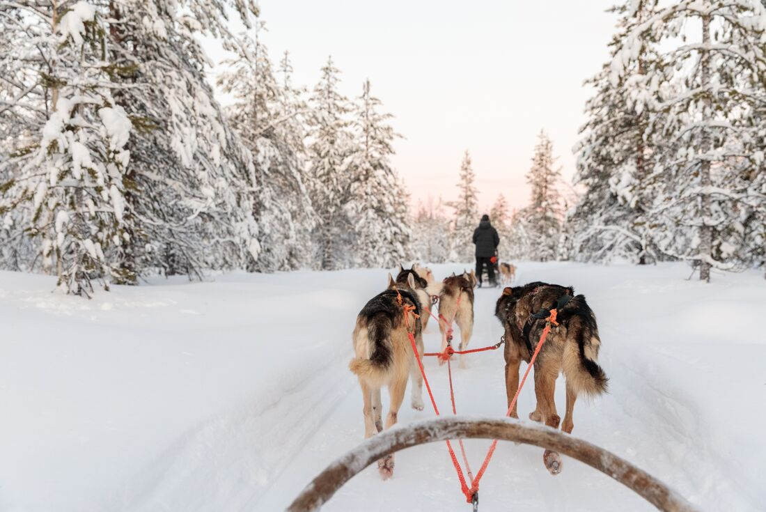 Finnish Lapland in Winter
