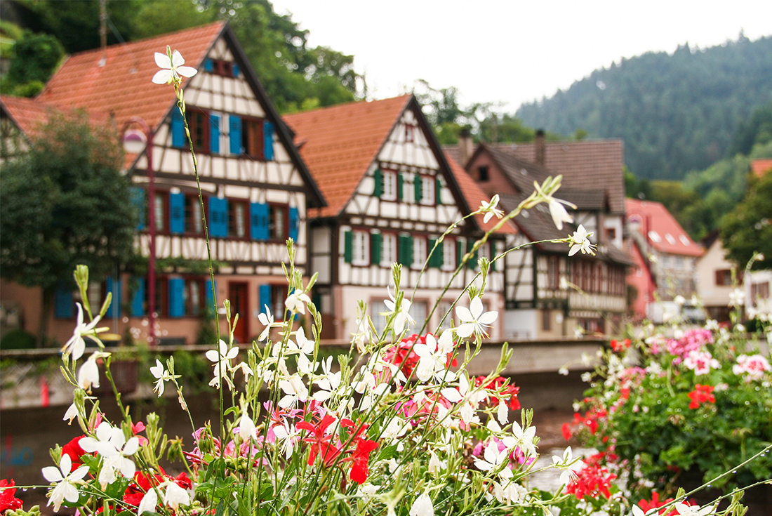Highlights of Romantic Germany 1