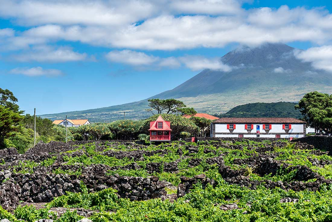 Highlights of the Azores 4