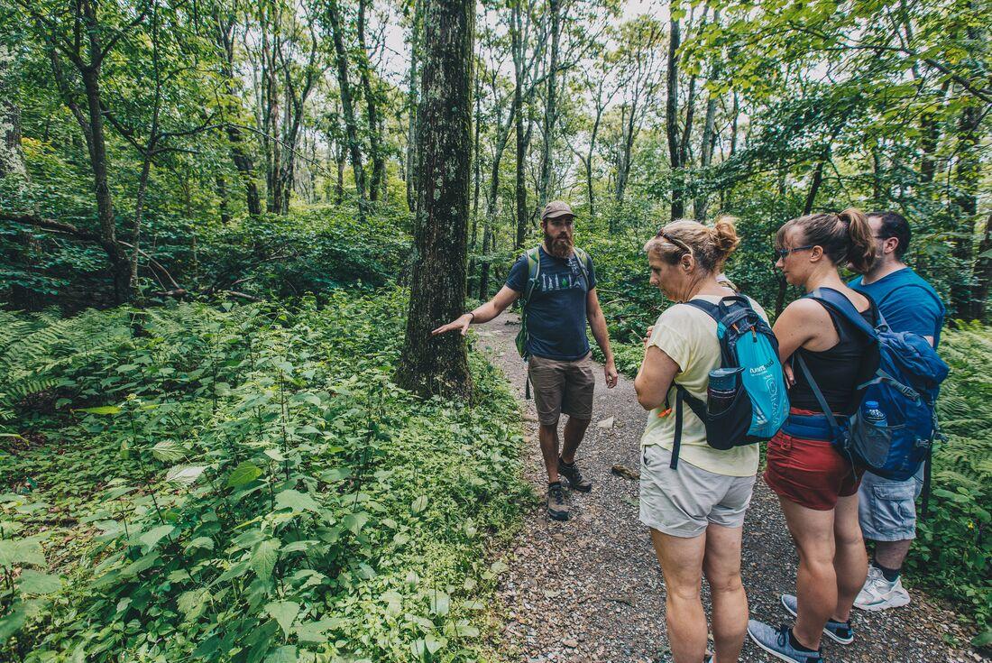 Trekking the Appalachian Trail 2