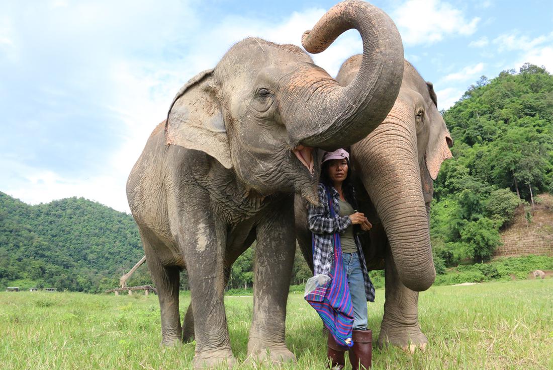 Explore Northern Thailand 2