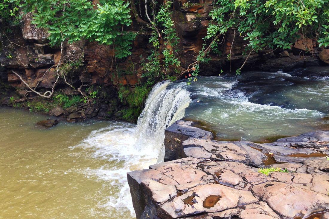 Cambodia Expedition: Elephants & Jungles 3