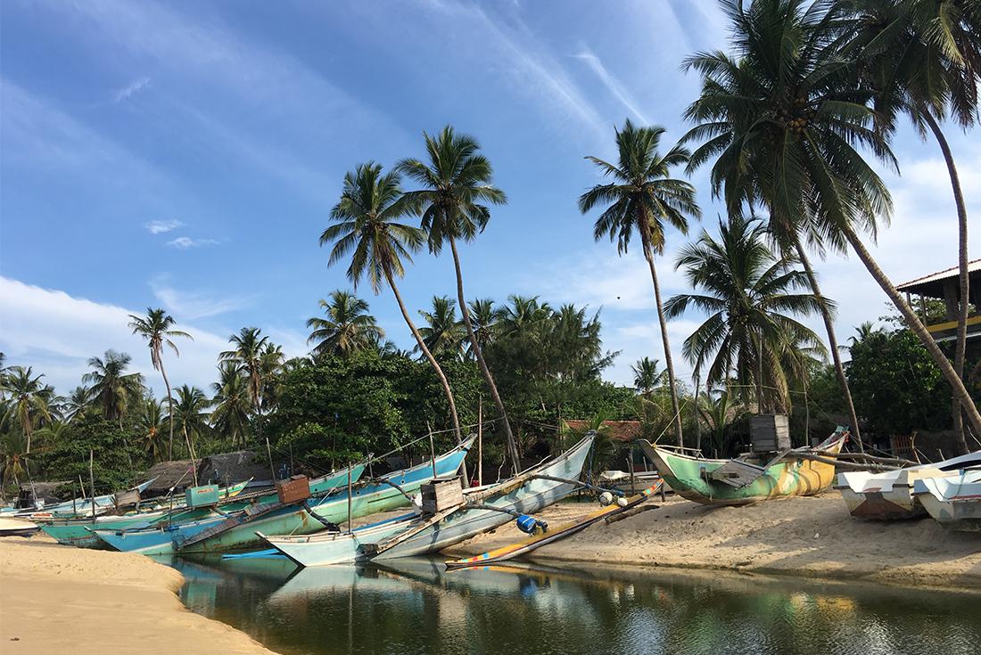 Sri Lanka Expedition: Wilderness & Wildlife 2