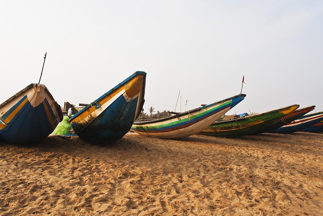 India Expedition: Markets & Jungles of Odisha 3