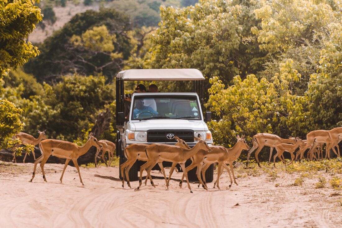 Explore Southern Africa