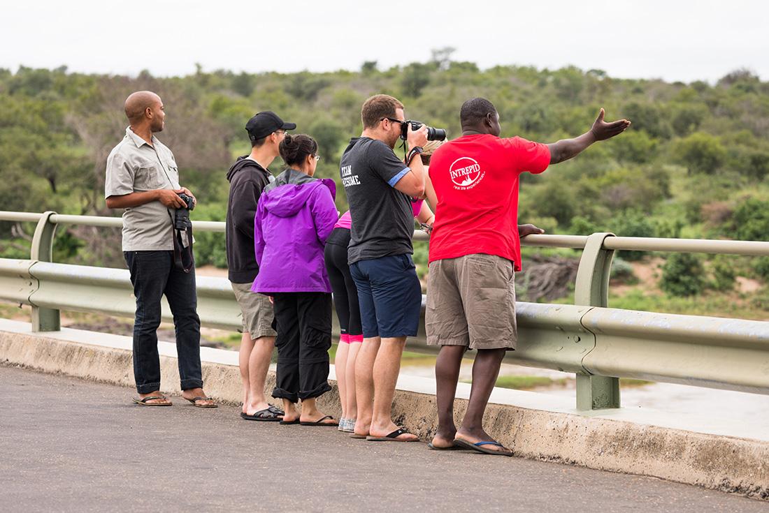 Kruger, Coast & Cape 2