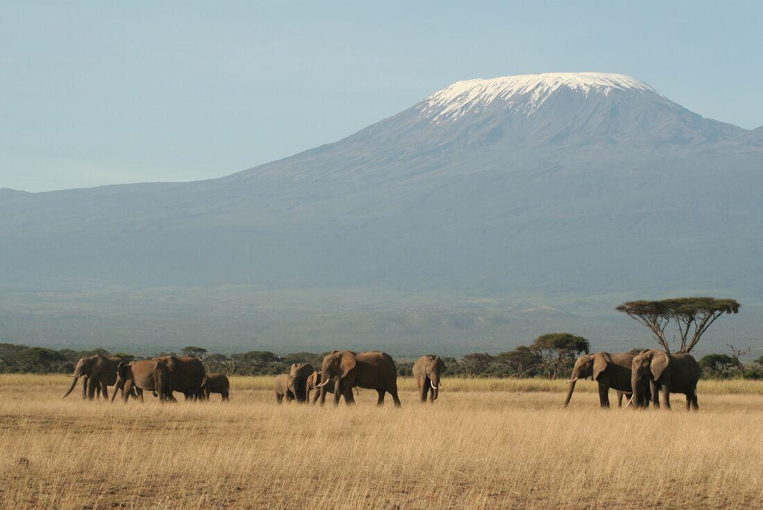 Kilimanjaro: Rongai Route 4