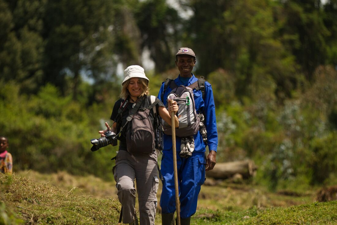 Mountain Gorillas of Rwanda 3