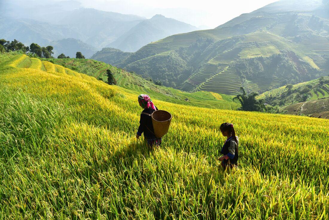 Northern Vietnam Adventure 4