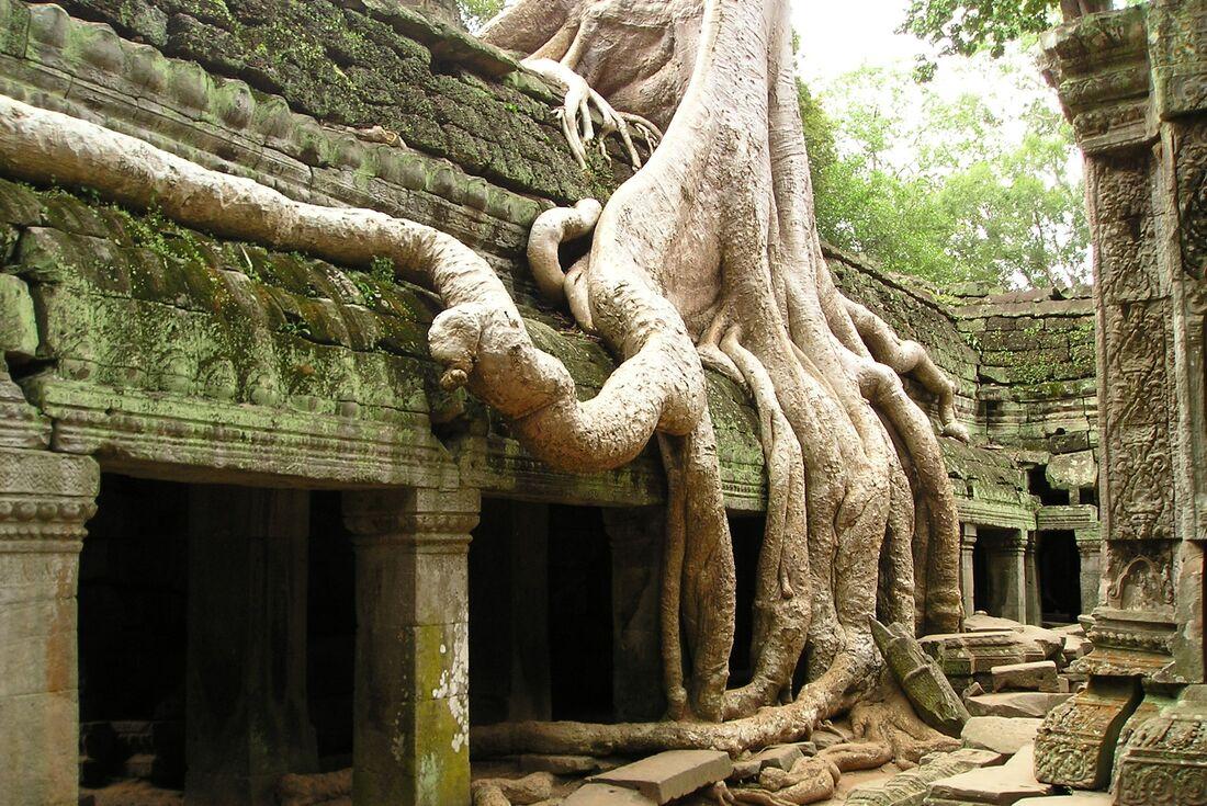 Best of Cambodia & Vietnam 4